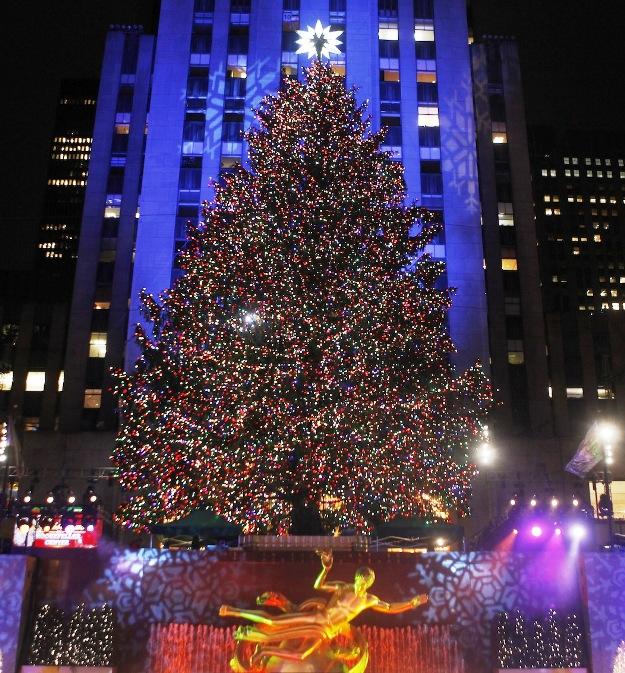 Top 10 Craziest Christmas Trees Of 2011