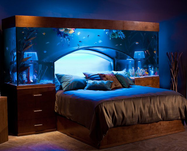 Aquarium bed holds 650 gallows of water over your head for Above water fish tank