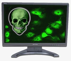computer-malware.jpg